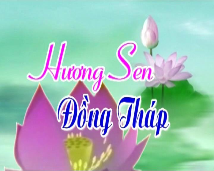 Hương sen Đồng Tháp - 16/10/2020