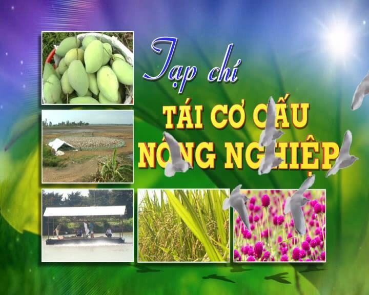 Tái cơ cấu nông nghiệp - 25/8/2019