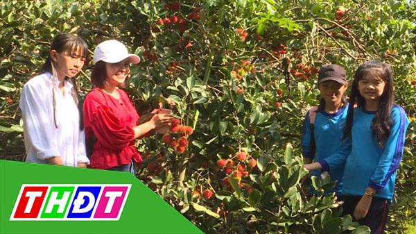 Tạp chí Du lịch xanh - 25/8/2019 - Vườn trái cây Tám Sáng