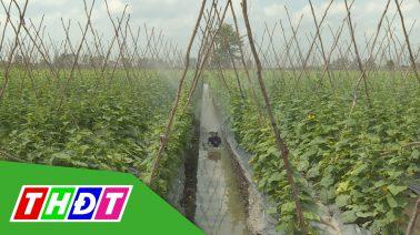 Tiếp sức cùng nông dân Kỳ 2: Giảm thiểu công tưới rẫy